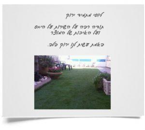 תמונת המלצת לקוחות תמיד ירוק ייבוא והתקנת דשא סינטטי