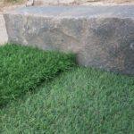 תוחם סלע אדום גרניט (5)