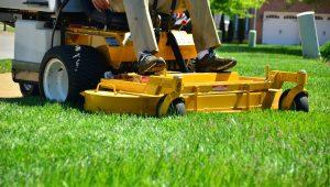 תמונת רקע לדף ציוד להשכרה התקנת דשא סינטטי תמיד ירוק